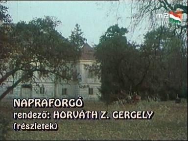 Horváth Z. Gergely: Napraforgó (részlet)