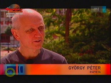 György Péter, esztéta