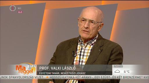 prof. Valki László, egyetemi tanár, nemzetközi jogász