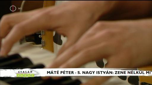 Máté Péter - S. Nagy István: Zene nélkül mit érek én? - előadja a Főnix zenekar