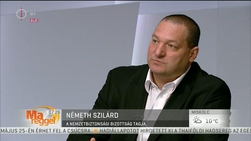 Németh Szilárd, tag, Nemzetbizottsági Bizottság