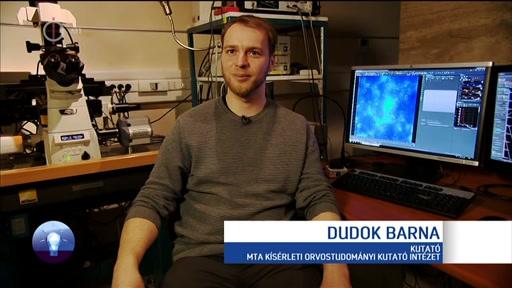 Dudok Barna, kutató, MTA Kísérleti Orvostudományi Kutatóintézet