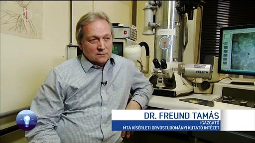 Dr. Freund Tamás, igazgató, MTA Kísérleti Orvostudományi Kutatóintézet