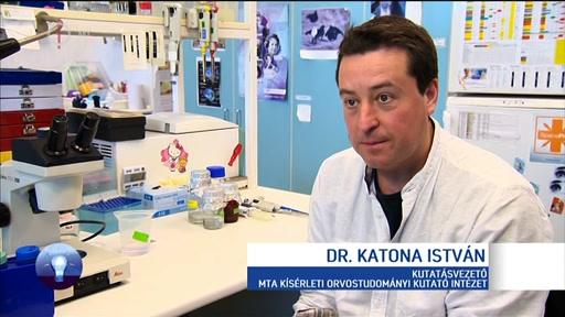 Dr. Katona István, kutatásvezető, MTA Kísérleti Orvostudományi Kutatóintézet
