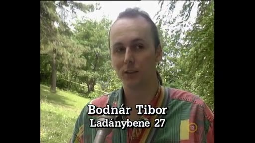 Bodnár Tibor, Ladánybene 27