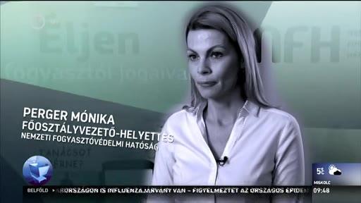 Perger Mónika, főosztályvezető-helyettes, Nemzeti Fogyasztóvédelmi Hatóság