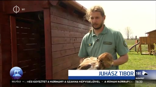 Juhász Tibor, természetvédelmi őrkerület-vezető, Hortobágyi Nemzeti Park