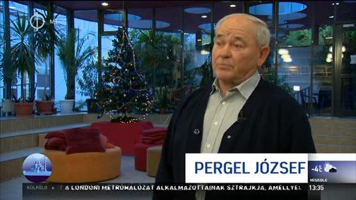 Pergel József