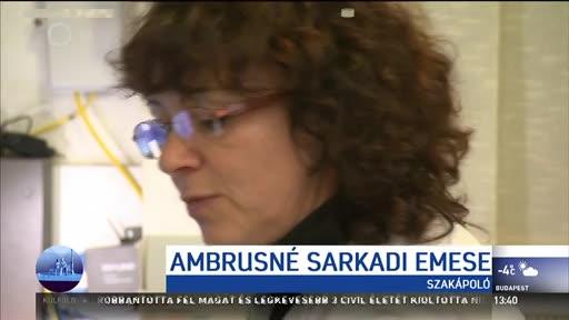 Ambrusné Sarkadi Emese, szakápoló