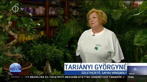 Tarjányi Györgyné, üzletvezető, Safru Virágbolt