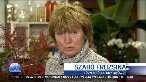 Szabó Fruzsina, cégvezető, Safru Kertészet