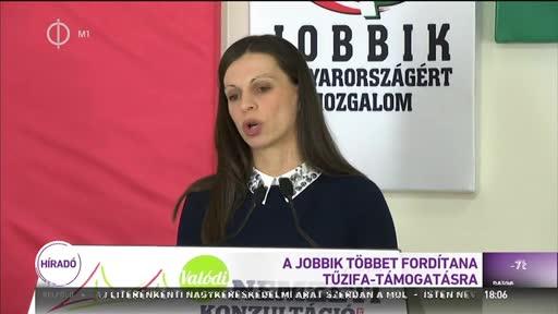 A Jobbik többet fordítana tűzifa-támogatásra