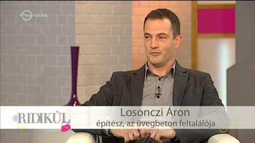 Losonczi Áron, építész, feltatáló
