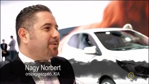 Nagy Norbert, országigazgató, Kia