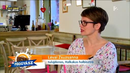 Lévai Zsuzsanna, tulajdonos, Halkakas halbisztró